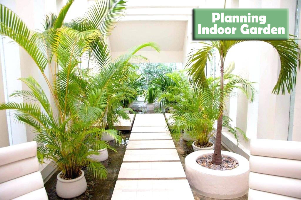 Planning-Your-Indoor-Garden